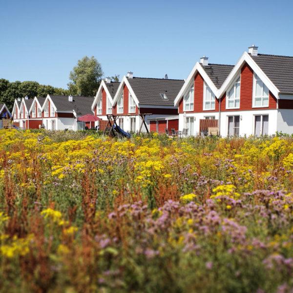 Ferienhaus Seepark Nordhorn